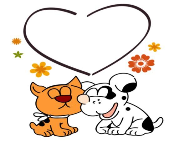 cani gatti san valentino