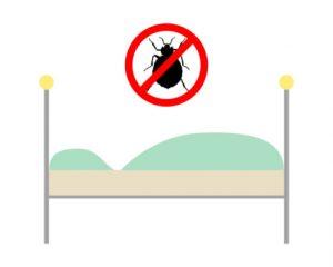 cimici dei letti