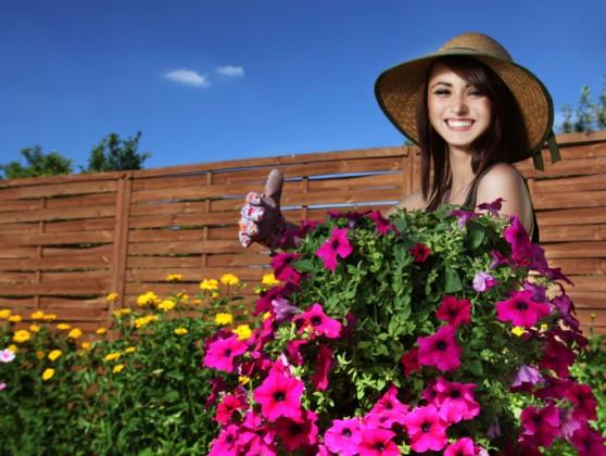 giardinaggio orticoltura