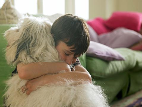 cane abbraccio bambino