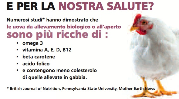 benefici uova bio