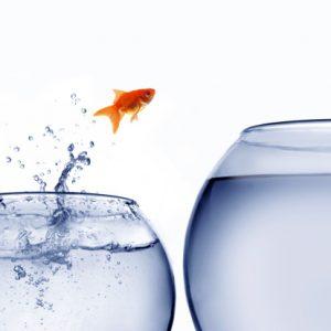 vincere la paura di cambiare