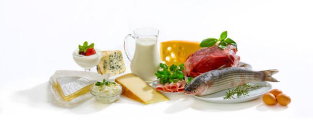 proteine dieta dimagrante