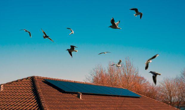 pannello solare termico a circolazione forzata