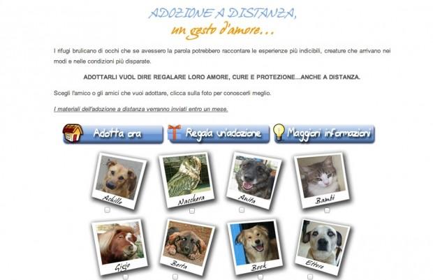 come adottare un cane a distanza ENPA