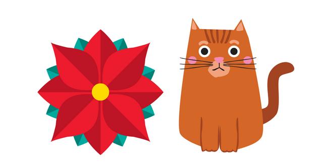 avvelenamento da stella di Natale nei gatti