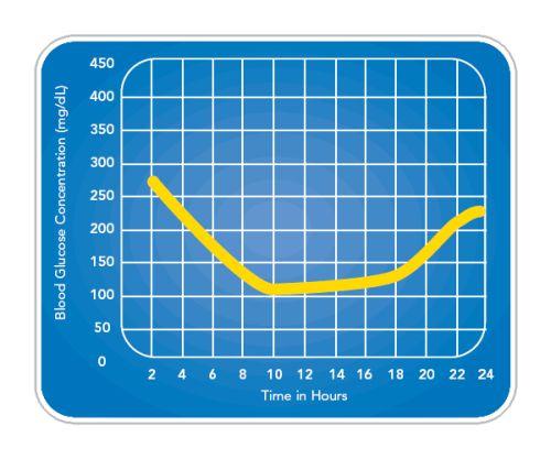 curva glicemica cane