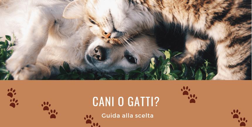 guida alla scelta del cane o del gatto