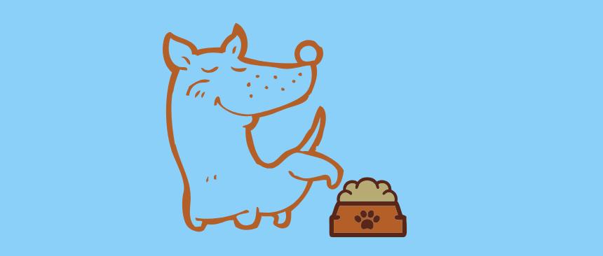cane fa pipì nella ciotola del cibo