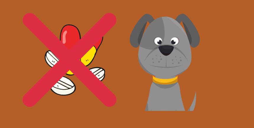 rischi farmaci per umani dati ai cani